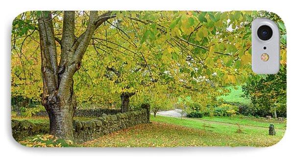 Autumn Wonderland IPhone Case
