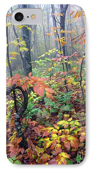 Autumn Woodland Phone Case by Thomas R Fletcher