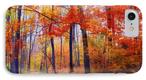Autumn Woodland Trail IPhone Case by Jessica Jenney