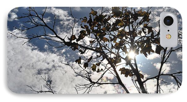 Autumn Yellow Back-lit Tree Branch IPhone Case by Matt Harang