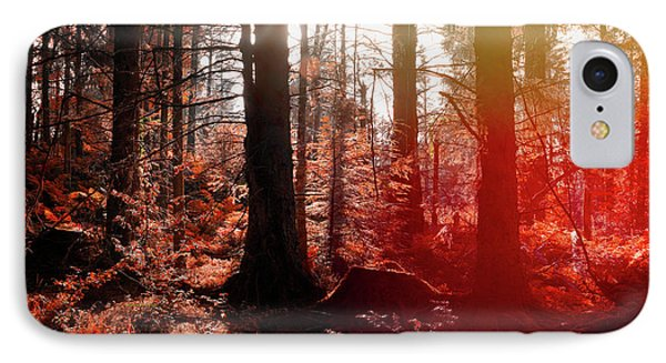 Autumnal Afternoon IPhone Case