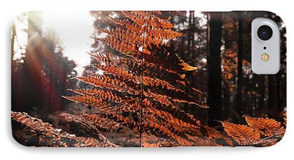Autumnal Evening IPhone Case