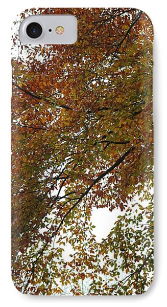 IPhone Case featuring the photograph Autumn's Abstract by Deborah  Crew-Johnson