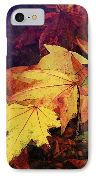 Autumns Colors Phone Case by Robert Ball