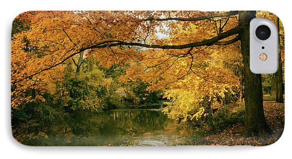 IPhone Case featuring the photograph Autumn's Golden Tones by Jessica Jenney
