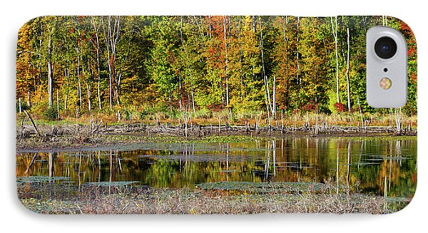 IPhone Case featuring the photograph Autumns Quiet Moment by Karol Livote