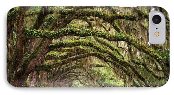 Tree iPhone 7 Case - Avenue Of Oaks - Charleston Sc Plantation Live Oak Trees Forest Landscape by Dave Allen