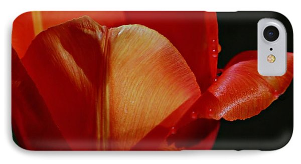 Awakening IPhone Case by Barbara S Nickerson