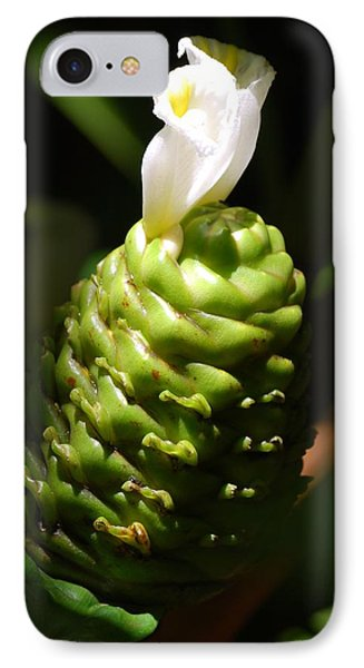 IPhone Case featuring the photograph Awapuhi Plant by Debbie Karnes