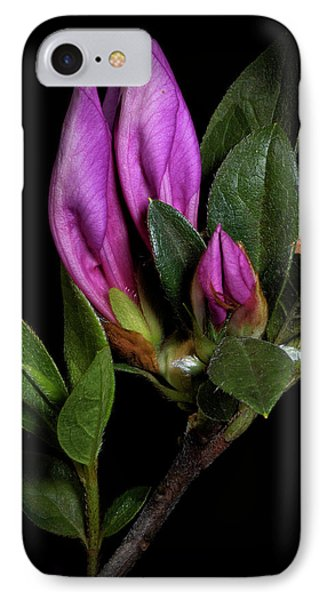 Azalea Buds IPhone Case by Richard Rizzo