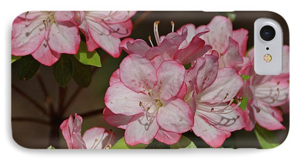 IPhone Case featuring the photograph Azalea by Sandy Keeton
