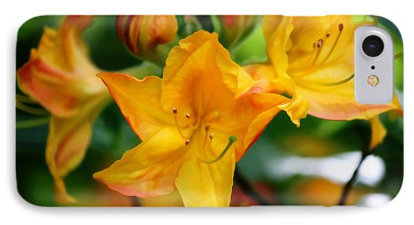 Azaleas Bright IPhone Case by Erica Hanel