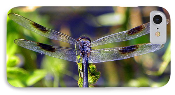 Azure Dragonfly IPhone Case by Terri Mills