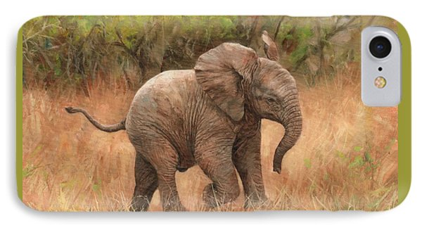 Baby African Elelphant IPhone Case by David Stribbling