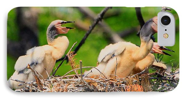 IPhone Case featuring the photograph Baby Anhinga Chicks by Barbara Bowen