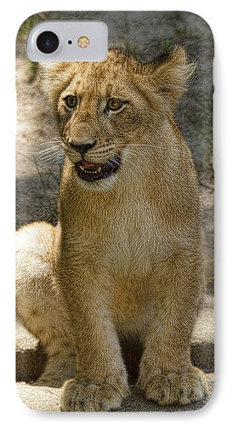 IPhone Case featuring the photograph Baby Baby by Cheri McEachin