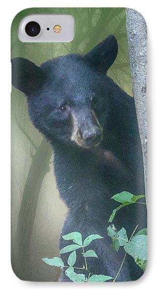 Baby Bear Takes A Peek IPhone Case by John Haldane