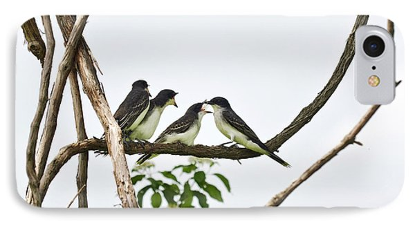 Baby Birds - Eastern Kingbird Family IPhone Case by Christina Rollo
