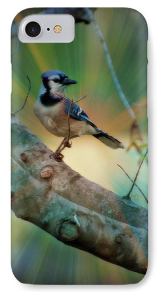 Baby Blue IPhone Case by Trish Tritz