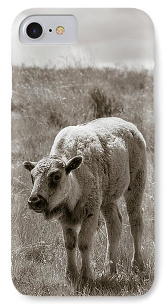 IPhone Case featuring the photograph Baby Buffalo In Field With Sky by Rebecca Margraf
