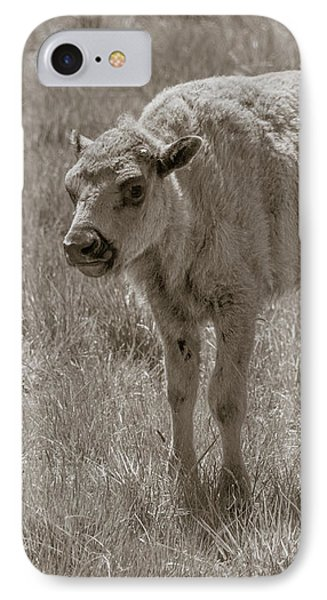 IPhone Case featuring the photograph Baby Buffalo by Rebecca Margraf