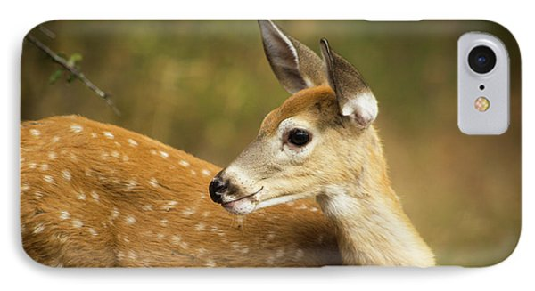 Baby Deer IPhone Case by Tyra OBryant