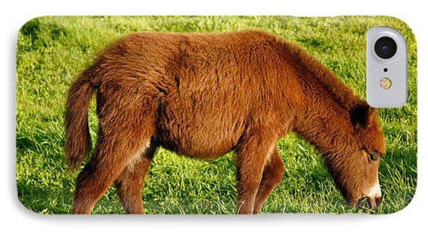 Baby Donkey Phone Case by Gaspar Avila