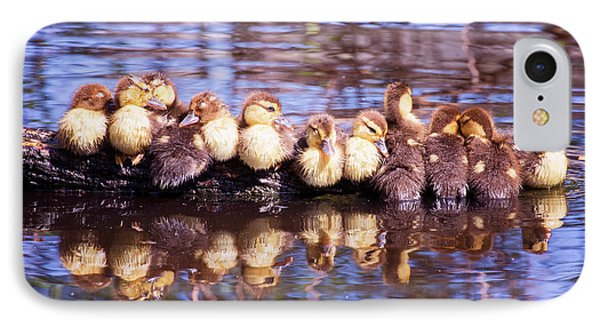 Baby Ducks On A Log IPhone Case by Stephanie Hayes