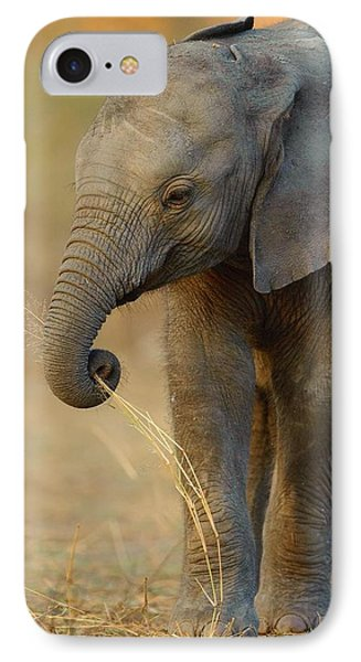 Baby Elephant IPhone Case by Happy Home Artistry