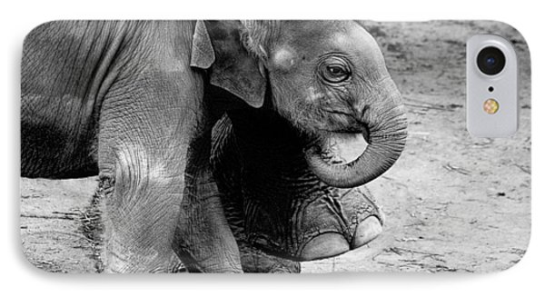 Baby Elephant Security IPhone Case