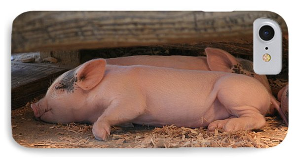 Baby Piglets IPhone Case