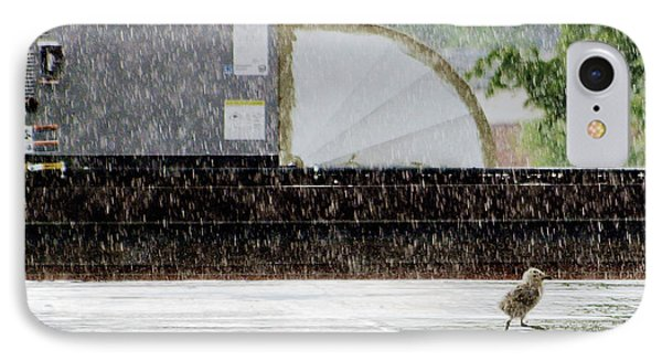 Baby Seagull Running In The Rain IPhone Case by Bob Orsillo