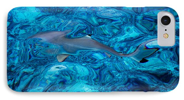 Baby Shark In The Turquoise Water. Production By Nature Phone Case by Jenny Rainbow