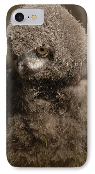 IPhone Case featuring the photograph Baby Snowy Owl by JT Lewis