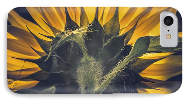 Back Lit And Back Facing IPhone Case by Chris Fletcher