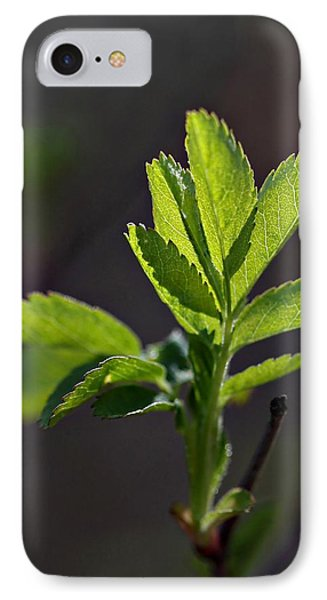 Back Lit IPhone Case by Cherie Duran