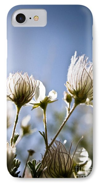 Backlit Fuzzy Flower Phone Case by Ray Laskowitz - Printscapes