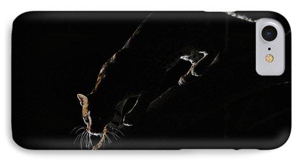 Backlit Ocelot IPhone Case by Wade Aiken