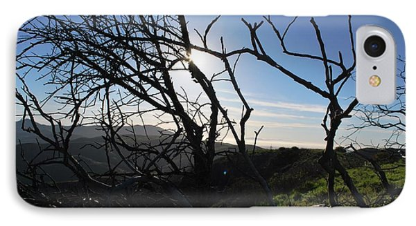 IPhone Case featuring the photograph Backlit Trees Overlooking Hillside by Matt Harang