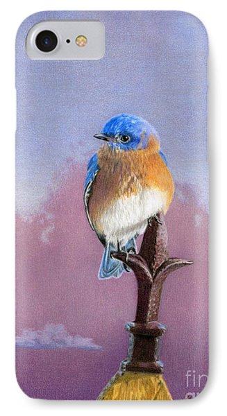Backyard Bluebird IPhone Case by Sarah Batalka