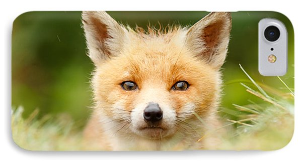 Bad Fur Day - Fox Cub IPhone Case by Roeselien Raimond