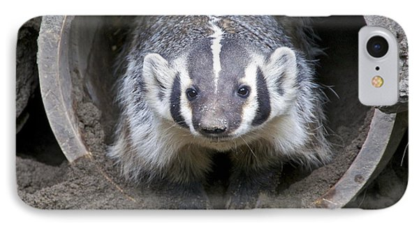 Badger IPhone Case by Sean Griffin