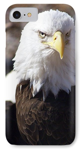 Bald Eagle 1 Phone Case by Marty Koch
