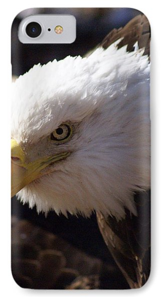 Bald Eagle 2 Phone Case by Marty Koch