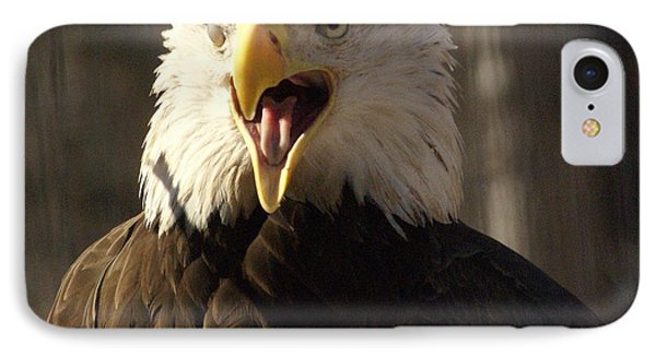 Bald Eagle 4 Phone Case by Marty Koch