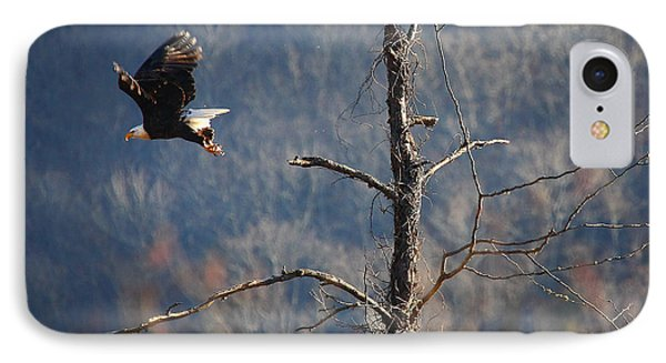 Bald Eagle At Boxley Mill Pond IPhone Case