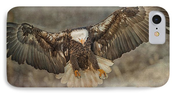 Bald Eagle  IPhone Case by CR  Courson