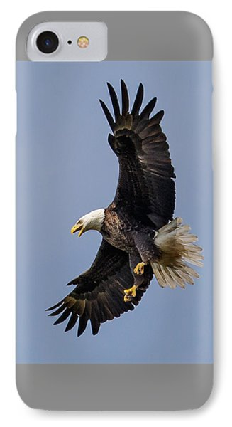 Bald Eagle Flyer IPhone Case by Phil Stone
