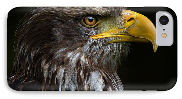 IPhone Case featuring the photograph Bald Eagle by Joerg Lingnau