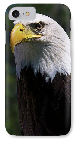 Bald Eagle Phone Case by JT Lewis